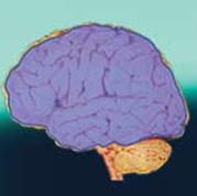 desativacao do giro frontal na hipnose